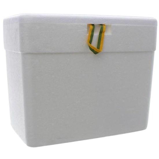 Caixa Térmica 13 Litros de Isopor com Alça
