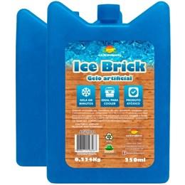 Cooler Térmico Brahma 20L + Bloco Gelo Artificial Reutilizável 250ml Guepardo